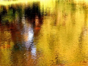 Reflections-300x225